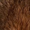 Peau de Lapin marron