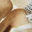 Peau de springbok naturelle