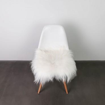 Galettes de chaise Mouton d'islande blanc